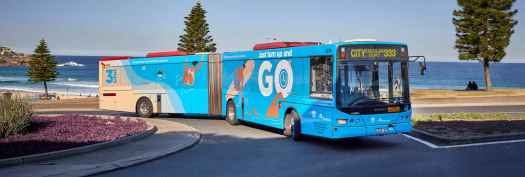 m1376-bondi-333-transport-carousel